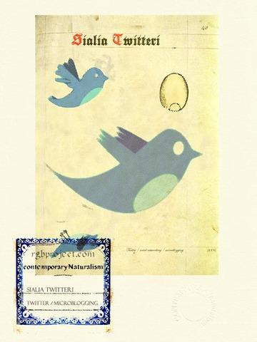 Sialia Twitteri