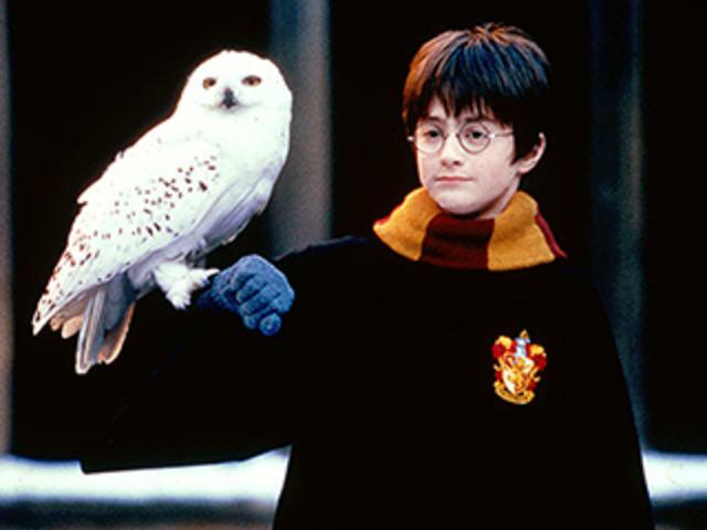 Harry Potter Film Will be Off Shelf