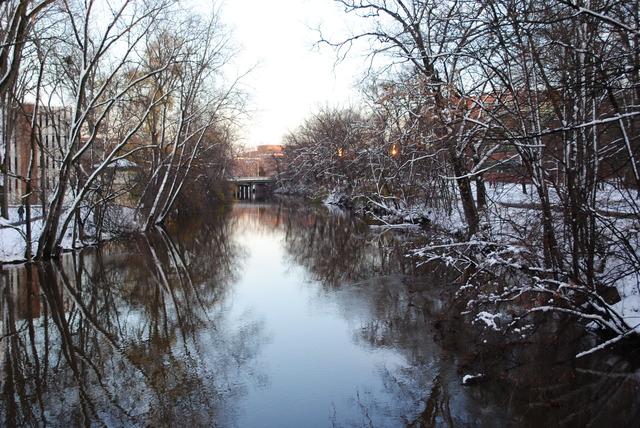 Red Cedar River Picture 10