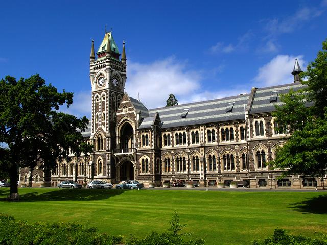 Universitary