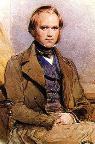 Comenta con el botánico Joseph Dalton sus especulaciones