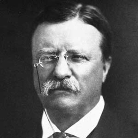 Buisness Reform: Roosevelt