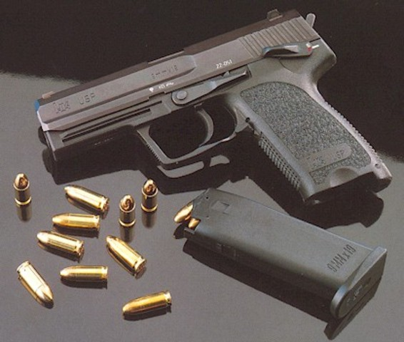 Domestic Violence Offender Gun Ban