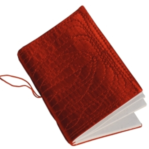 Darwin comienza a especular en su cuaderno rojo