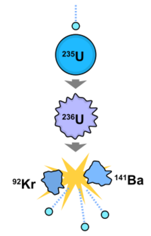 Fermi creates controlled nuclear reaction