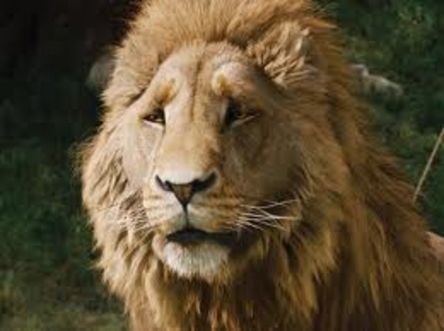 liam stars as Voice of Aslan in Narnia