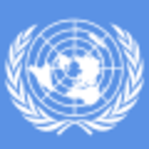 FNs Klimapanel