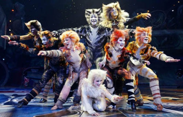 Cats opens on Broadway.