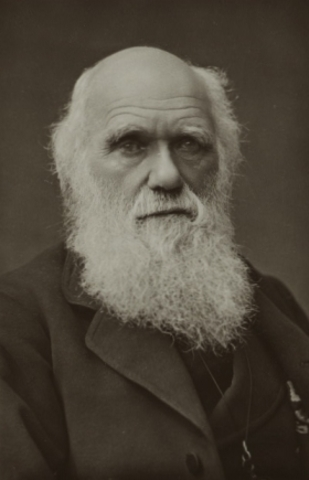 Charles Darwin Publishes His Theory