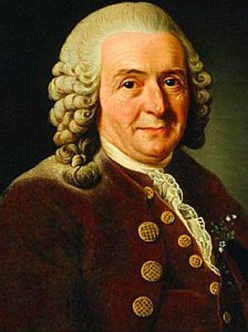 Carolus Linnaeus writes first paper