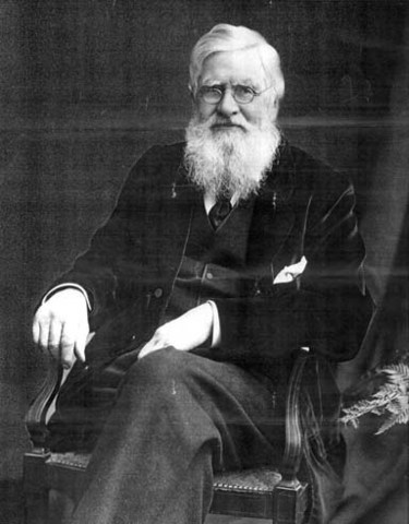 Alfred Wallace's Theory
