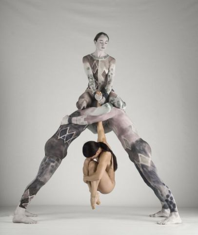 Pilobolus Formed