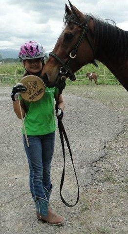 1st Annual Horse Fest