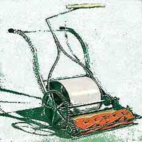 Self Lawn Mower