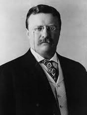 Theodore Roosevelt becomes president