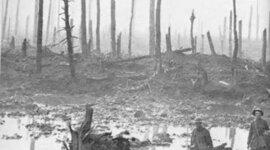 Guerra 1914 timeline