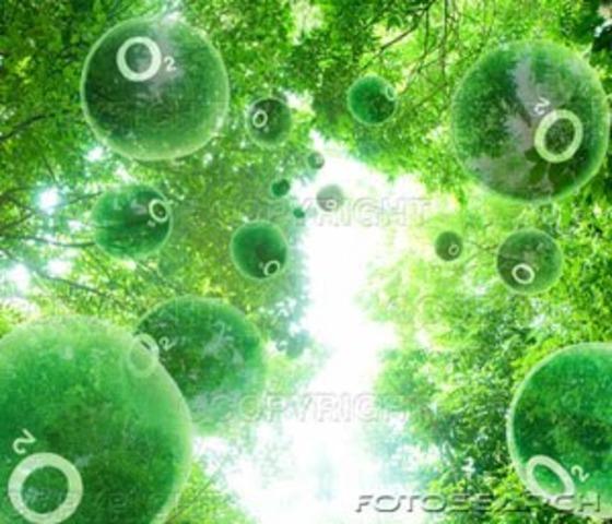 ''Ανακάλυψη'' του οξυγόνου