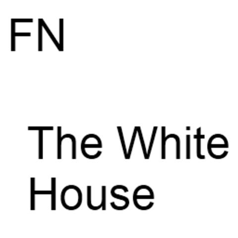 Det Hvide Hus og FN Går online