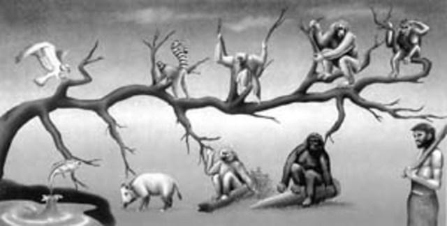 """Inicios de su teoría """"El Origen de las Especies"""""""