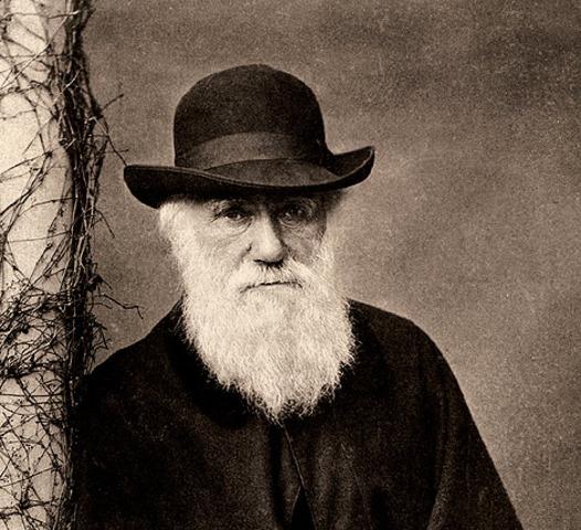 Darwin muere
