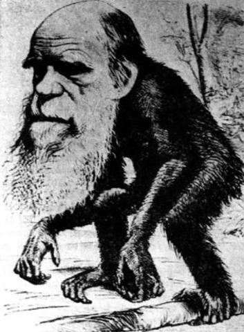 Darwin saca a la luz el origen de las especies