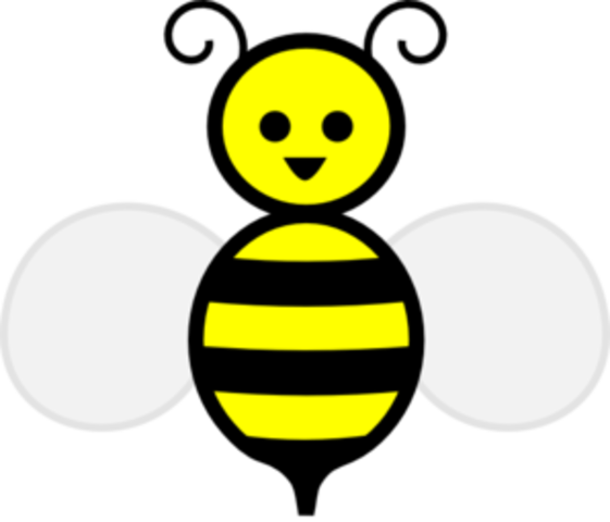 """9th grade- Read """"The Secret Life of Bees"""""""