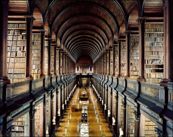 Looking in the Library