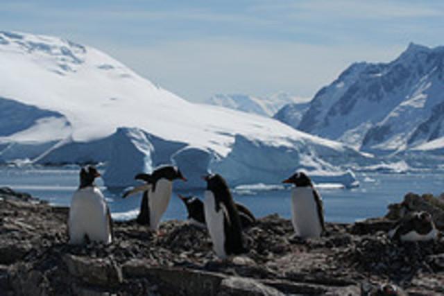 Live broadcast from Antarctica to U.S. schools
