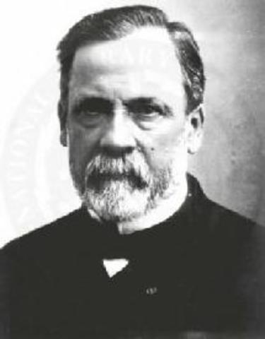 Xavier Progin