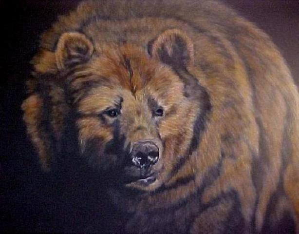 The Grizzly (A Profound Animal Experience)
