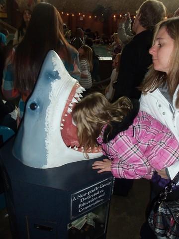 Caitlyn becomes a shark dentist...