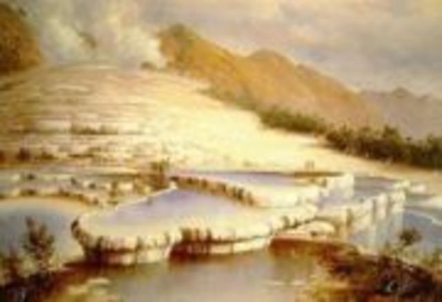 pink and white terraces