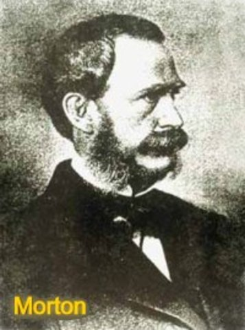 Η γέννηση του William Morton