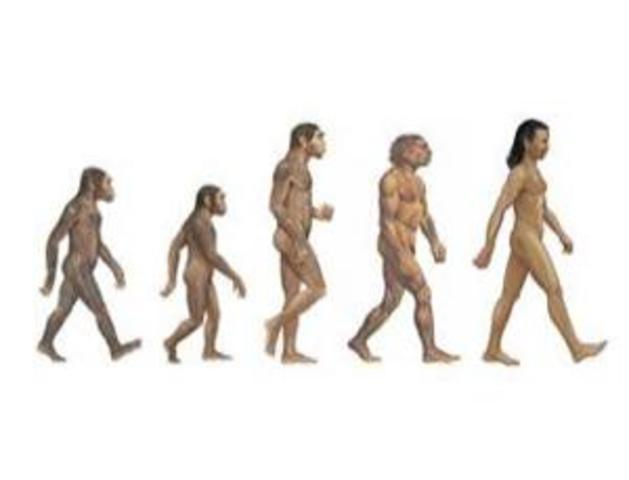 Homo Sapiens Evolve - 23:37:03:869.184