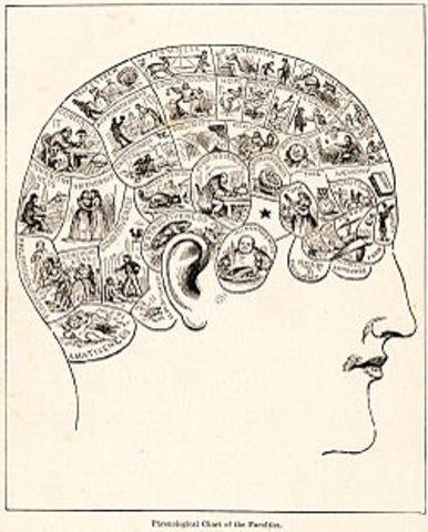 Franz Joseph Gall Begins the Study of Phrenology