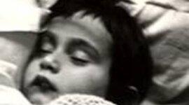 Anne Frank a Hero timeline