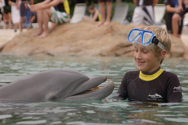 I swam with dolphins