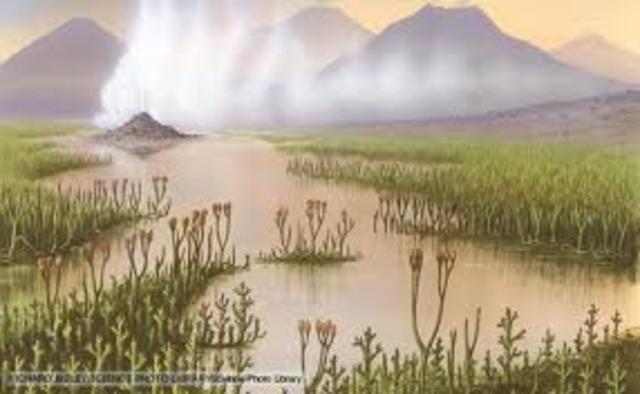 Silurian Period 438 MYA