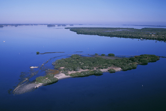 Pelican Island Refuge is founded
