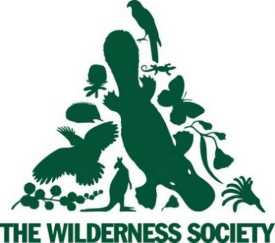 The Wilderness Society is founded