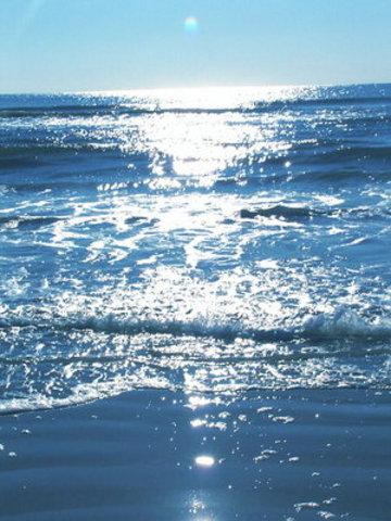 Ocean Dumping Act is passed