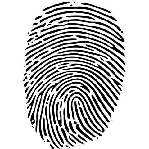 Fingerprints form.