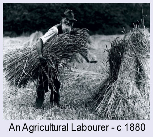 Agricultural Age
