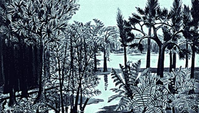 Carboniferous 345-280 MYA