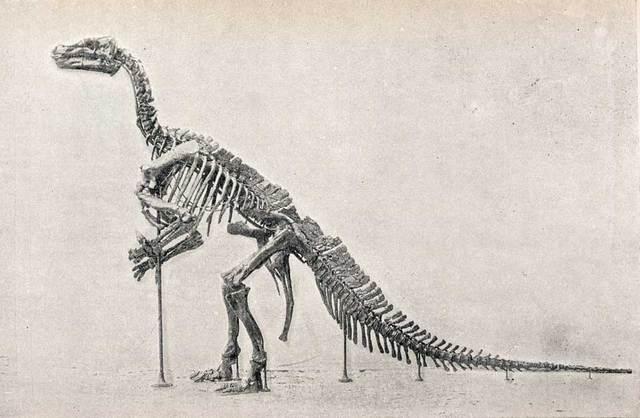 Triassic-225-195MYA