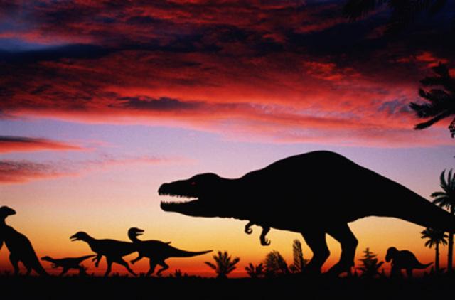 Cretaceous-136-65MYA