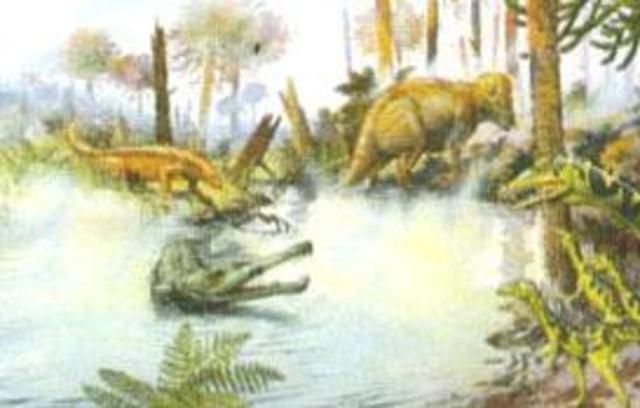 Triassic 225-195 MYA