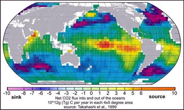 U.S. Joint Global Ocean Flux Study (JGOFS)