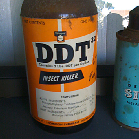 DDT (Insecticide)