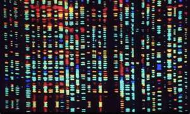 Launch of the Human Genome Project